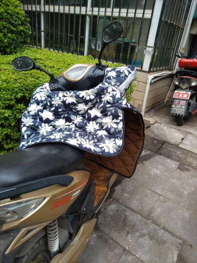 馨颜 冬季电动车挡风被 加厚绒胆保暖电瓶车挡风套护膝防寒被摩托挡风罩 蓝底方格 晒单图