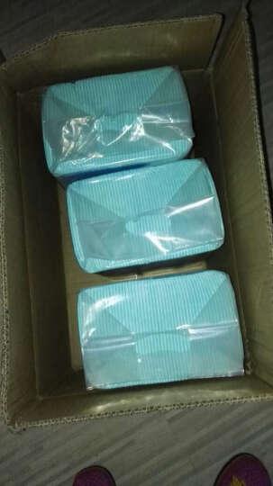KimPets 狗尿垫 狗尿片 宠物尿布狗狗尿片 狗厕所使用尿垫 L一包(40片)粉蓝混发 晒单图
