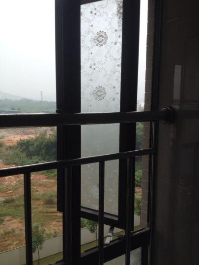 DH加厚90cm玻璃贴膜窗纸玻璃贴纸浴室窗户移门磨砂膜磨砂贴膜玻璃膜即时贴遮光贴膜 清新花草-宽90cm*3米 晒单图