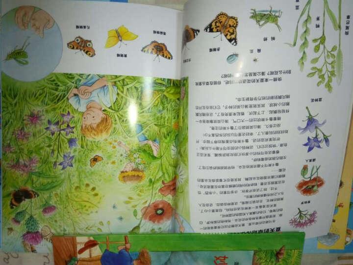 海豚科学馆:走近自然科学图画书(套装共8册) 晒单图