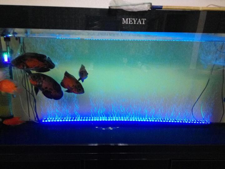 SOBO 水族箱鱼缸三合一内置过滤器增氧泵净水器过滤桶带造浪* 小号20W+硝化细菌胶囊60粒 * 晒单图