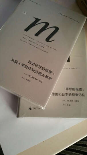 罪孽的报应:德国和日本的战争记忆 -书籍 晒单图