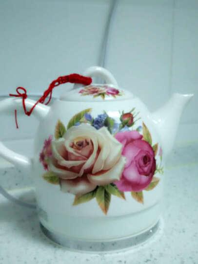一家欣(yijiaxin)电水壶陶瓷泡茶壶 1L小容量自动断电防干烧高温陶瓷水壶  FQJ-1061 红白玫瑰 晒单图