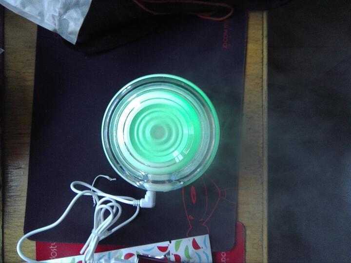 USB迷你加湿器静音办公室桌面学生宿舍卧室家用小夜灯空气净化补水器企业定制 绿色-花瓶加湿器 晒单图