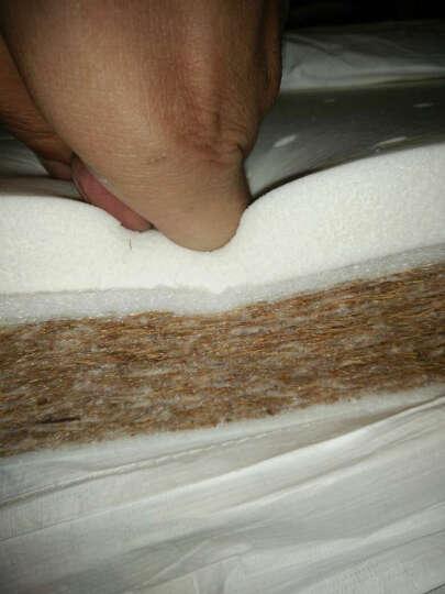 多宝贝(Doux Bebe)婴儿床垫天然椰棕进口乳胶新生儿床垫子宝宝幼儿园可定做 5CM基本版四季款 111*63CM【三维透气】 晒单图