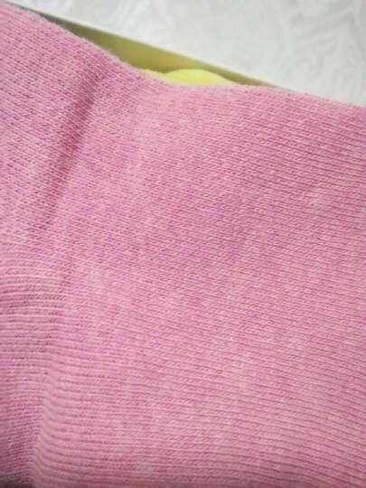 猫人秘密(MIIOW SECRET)袜子女袜中筒保暖毛巾袜船棉质休闲运动短袜 蝴蝶毛巾袜4双-中筒 晒单图