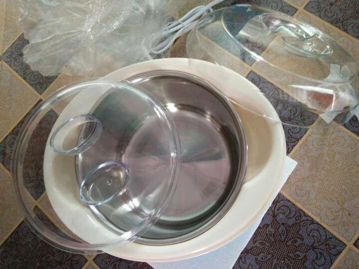 东菱Donlim酸奶机家用酸奶发酵机酸奶纳豆机制酒机纳豆机家用酸奶酵母米酒分杯米酒机DL-SNJ01 标配+4个分杯 晒单图