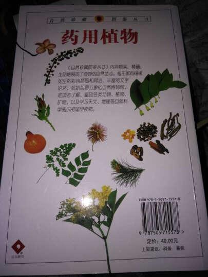 药用植物/自然珍藏图鉴丛书 晒单图