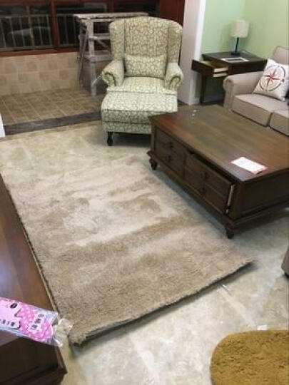 梓晨 简约现代客厅茶几地毯丝毛绒卧室床边满铺地毯 古典咖啡(厚度4.5cm) 200CMx300CM 晒单图