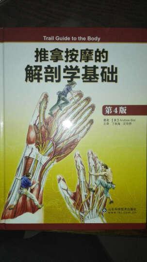 推拿按摩的解剖学基础(第4版)(精) 晒单图