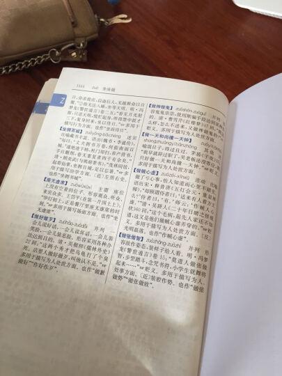 【18000条成语】成语大词典单色本新修订版中华成语词典初高中学生新华汉语成语大全字典现 晒单图