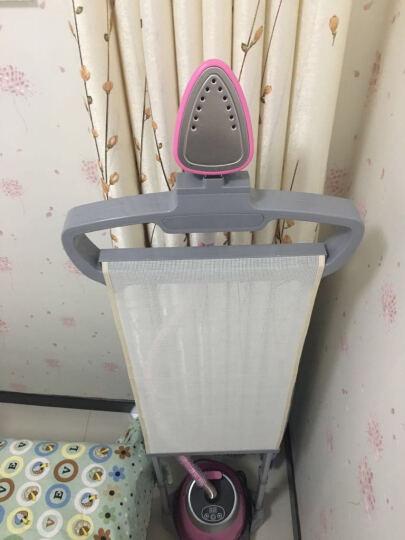 华光(HG)挂烫机 QY65-HDV 十档调节双杆蒸汽挂烫机(粉色) 晒单图