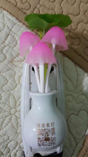 玛兰名灯(MERLONG) 卧室床头台灯现代简约温馨客厅创意装饰卧室台灯遥控LED可调光 白色绒布款+40瓦白炽灯泡 按钮开关 晒单图