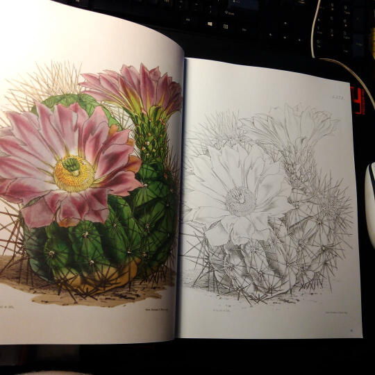 英国皇家植物园植物图谱2: 异域植物 晒单图