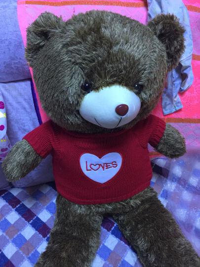 阳光猴 大号毛衣泰迪熊公仔抱枕毛绒玩具刺猬熊布娃娃抱抱熊大熊猫玩偶生日礼物女生 红色LOVE爱心刺猬熊 1米 晒单图