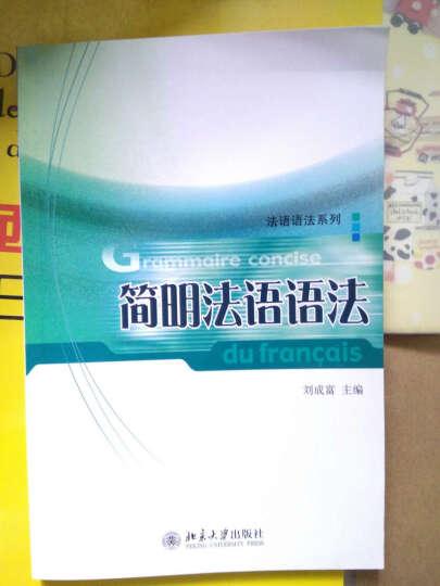 新西汉词典(平装本) 晒单图