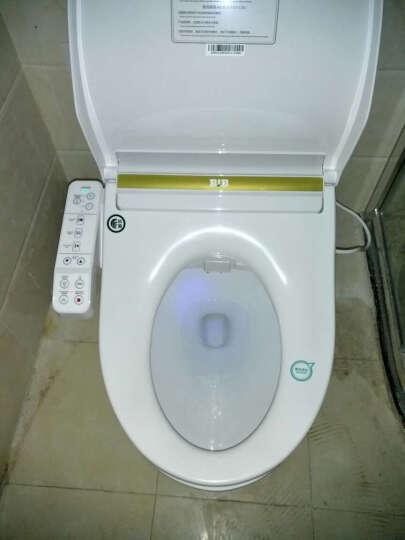 便洁宝BJB  即热式智能一体马桶 全自动冲水烘干除臭坐便器 自动加热烘干B1636G 300mm坑距 智能马桶B1636G 晒单图