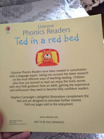 自然拼读 盒装进口原版 平装 智力开发学前教育(4-6岁) 晒单图