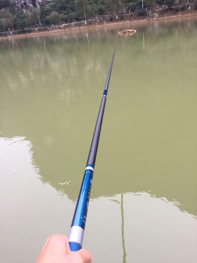 蓝鲨(BlueSHARK) 浴火凤凰 高碳素超硬调台钓竿钓鱼竿手竿套装组合鱼杆渔具 浴火凤凰6.3米 晒单图