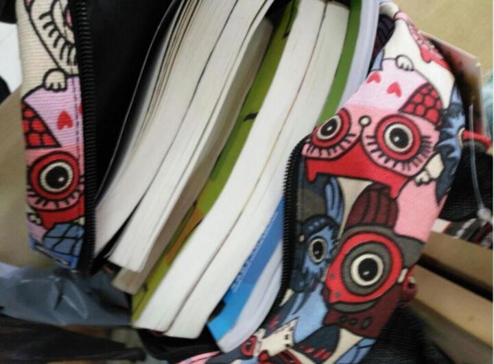 Epiphqny韩版双肩包女士复古帆布卡通猫头鹰学院风动物印花旅行女学生迷你包51024 猫头鹰 晒单图