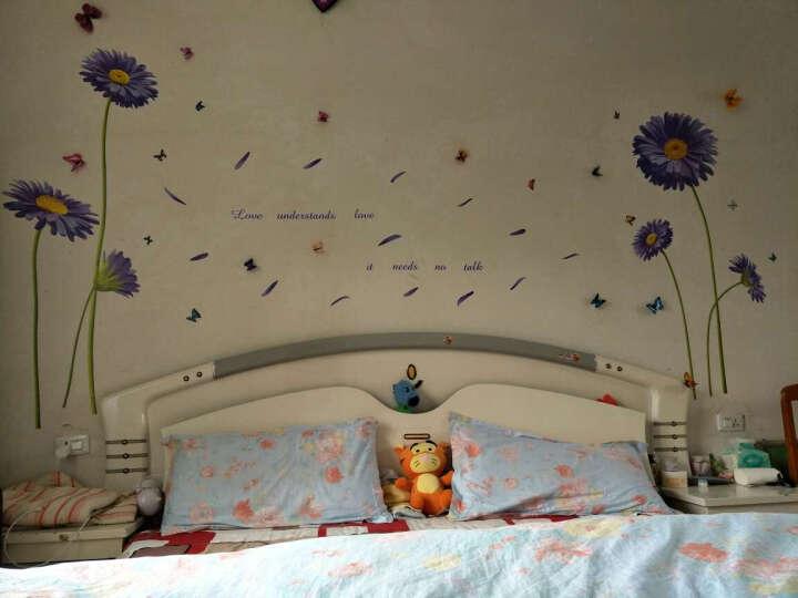 凡雅空间 浪漫温馨卧室海报纸墙贴纸床头餐厅创意客厅沙发电视背景墙贴画墙纸可移除荷兰菊玫瑰花 05.爱似水仙 特大号 晒单图