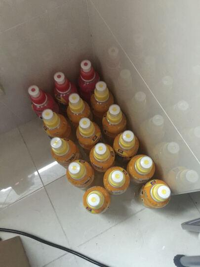 韩国进口 啵乐乐乳酸菌饮料 进口饮料pororo八道水果汁饮品 热带水果味235ml*24瓶/箱 晒单图