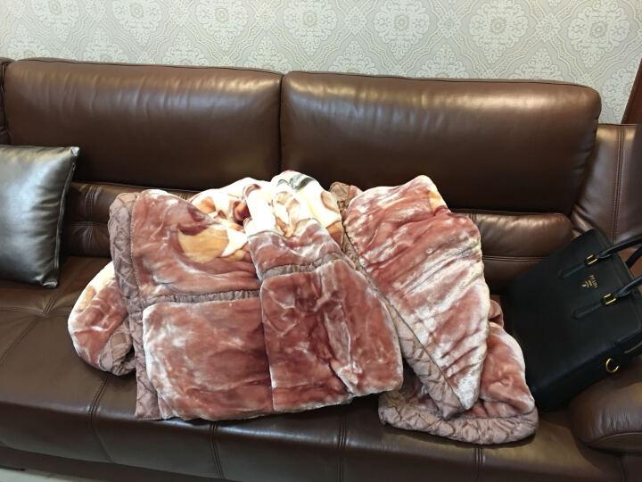 勿忘好洁 拉舍尔双层毛毯单双人婚庆 春秋冬毯法莱绒加厚毯子1.5/1.8/2m 玫瑰情深 180*220  6斤 晒单图