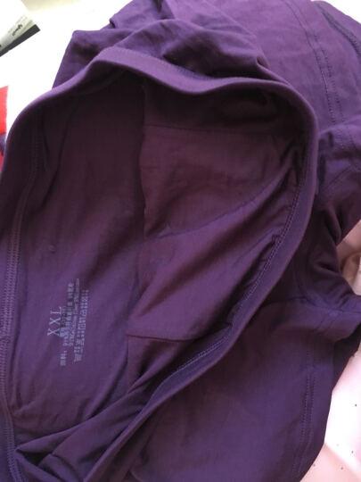 丹顿公子 男士内裤平角宽松棉四角短裤头 平角透气莫代尔男内衣大码盒装4条装u凸打底内裤男 300系列(冰丝)4条装套盒三 XL 晒单图