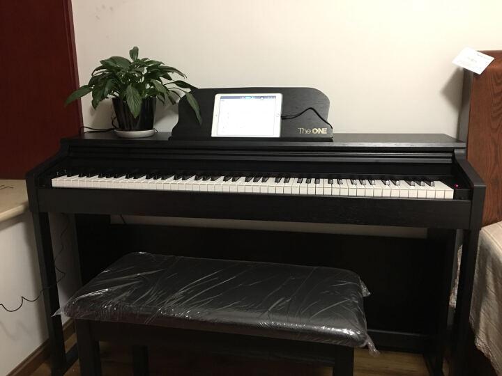 12钢琴键盘示意图