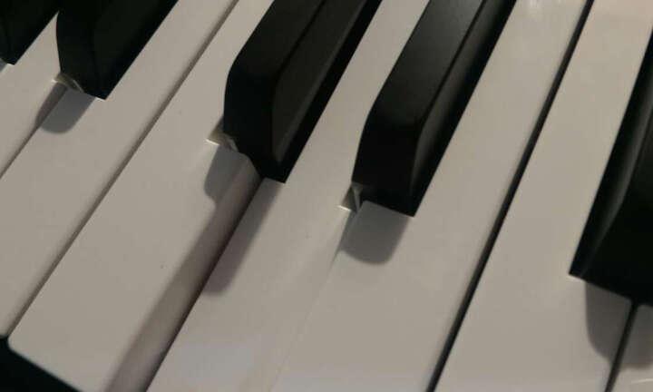 雅马哈电钢琴P48重锤88键成人儿童数码智能电子钢琴 P48主机+单踏板+U架+双人琴凳等全套配件 晒单图