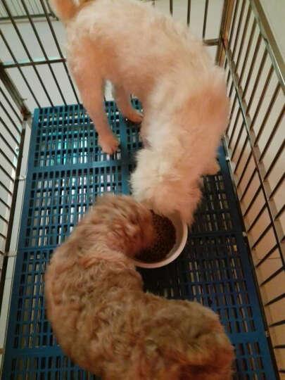耐威克好迈系列幼犬粮10kg20斤 大型小型犬通用型 晒单图