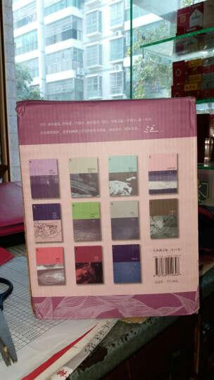 包邮三毛典藏全集 盒装全11册 纪念我们心中永远的三毛 三毛 小说文学 书籍 撒哈拉的故事 晒单图
