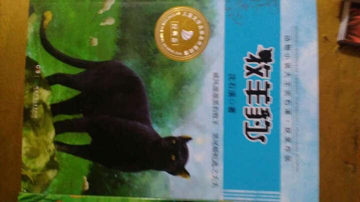 沈石溪动物小说系列全集 6册 保姆蟒  藏獒渡魂 11-14岁儿童文学名家小学生课外书籍 晒单图
