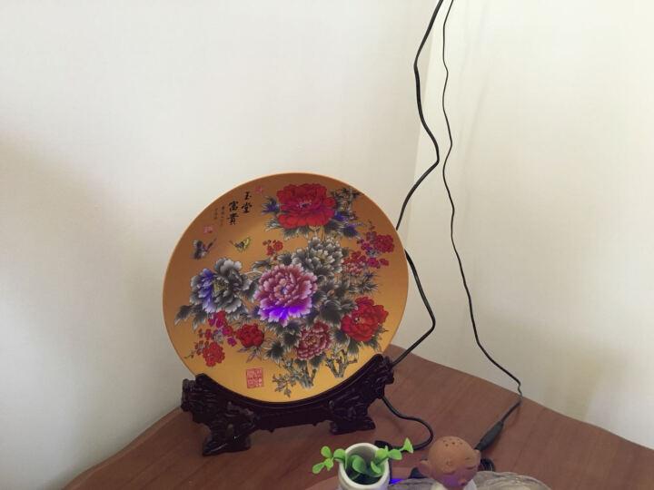 领格(LINGGE) 景德镇陶瓷器  挂盘 装饰盘居家 家居摆设饰品 摆件装饰盘 工艺品 金色大牡丹图 小号宽约25厘米 晒单图