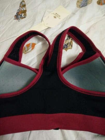 俞兆林运动文胸女士背心式运动内衣无钢圈前扣前拉链专业防震跑步瑜伽运动文胸罩 段染蓝色 M 晒单图