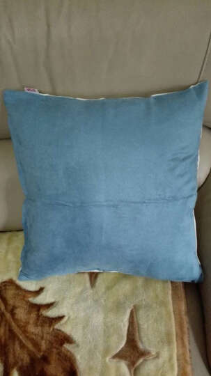 富居 新中国风刺绣抱枕 沙发床靠垫45*45cm 龟背 抱枕套-不含芯 晒单图
