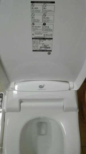 爱真(iZENBIDET)智能马桶盖洁身器电动即洗即热进口坐便盖F19升级 2019顺肠助便升级款 高配(长度50.7cm) 晒单图