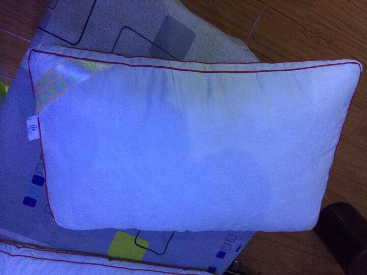 【赠品单拍不发货】丝煌纯棉面料高弹纤维枕芯 长方形47x74cm 单只 晒单图