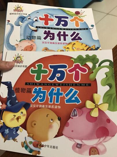 快乐巧连智(10DVD)(京东专卖) 晒单图