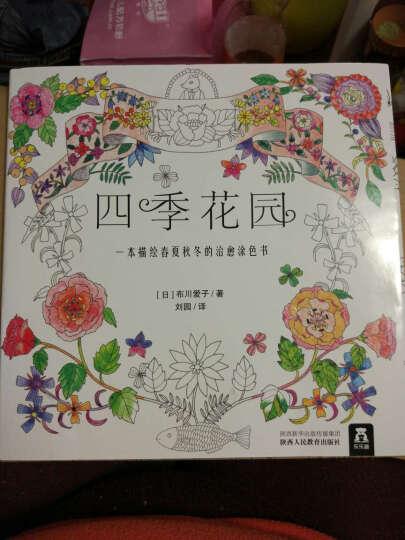 四季花园:一本描绘春夏秋冬的治愈涂色书送了几只