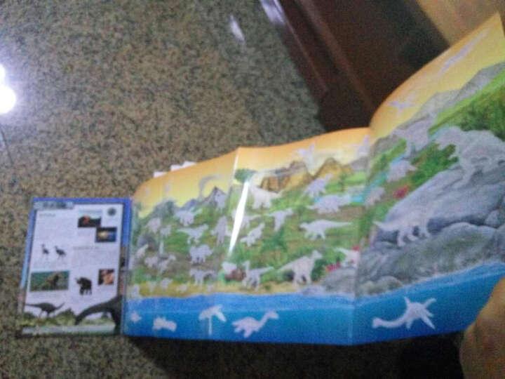 海豚科学馆:动物王国科普贴纸书(套装全5册) 晒单图