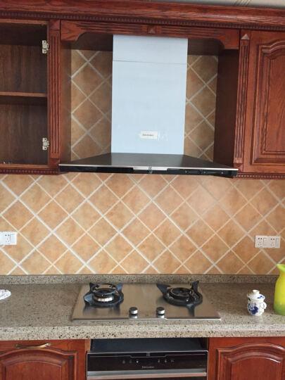 伊莱克斯(Electrolux)大容量多功能嵌入式电烤箱家用烘培EOB2200BOX 烤箱 晒单图