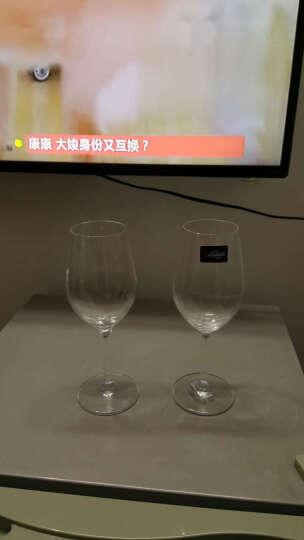 Z-SHINE红酒杯架红酒杯葡萄酒红酒杯架悬挂倒挂创意杯架套装 640ML红酒杯+红宝石杯架 晒单图
