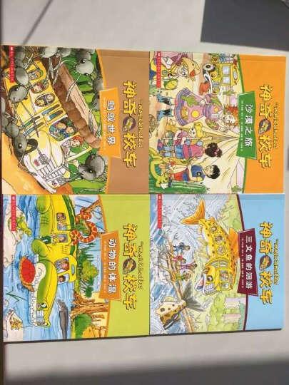 神奇校车·手工益智版(全8册)赠校车模型+折纸+涂色游戏+迷宫+找不通 神奇校车 晒单图