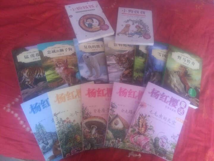 小狗钱钱系列全2册 财富启蒙金融读物 7-10岁学生课外书阅读书籍 晒单图