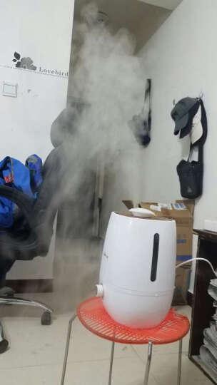 小熊(Bear) JSQ-A40A2加湿器 空气加湿器 家用 卧室办公室低噪 机械版 晒单图