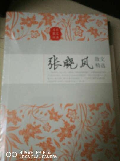 张晓风散文精选(名家散文经典) 晒单图