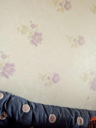 虹语馨 10米装 现代简约欧式加厚PVC自粘墙纸墙壁自粘纸带胶卧室客厅书房电视背景墙壁贴纸墙贴 米色底皇冠 0.45*20米 晒单图