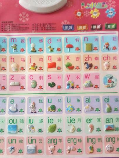 猫贝乐四代升级有声挂图3件套装(水果 人物 拼音篇)  双面图案宝宝早教幼儿益智语音点读发声故事机玩具 晒单图