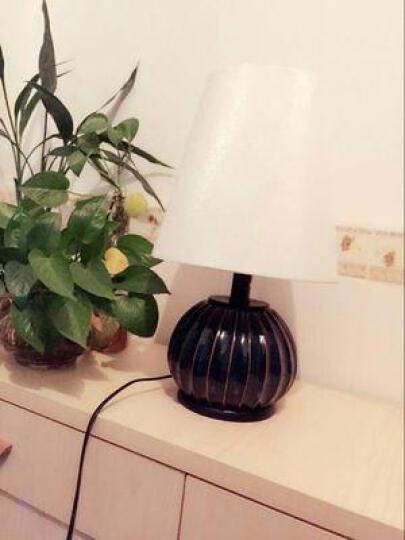 繁登堡(fandengbao)北欧台灯现代卧室床头灯欧式创意书房客厅美式田园礼品礼物创意定制节日装 晒单图
